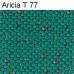 Aricia T 77